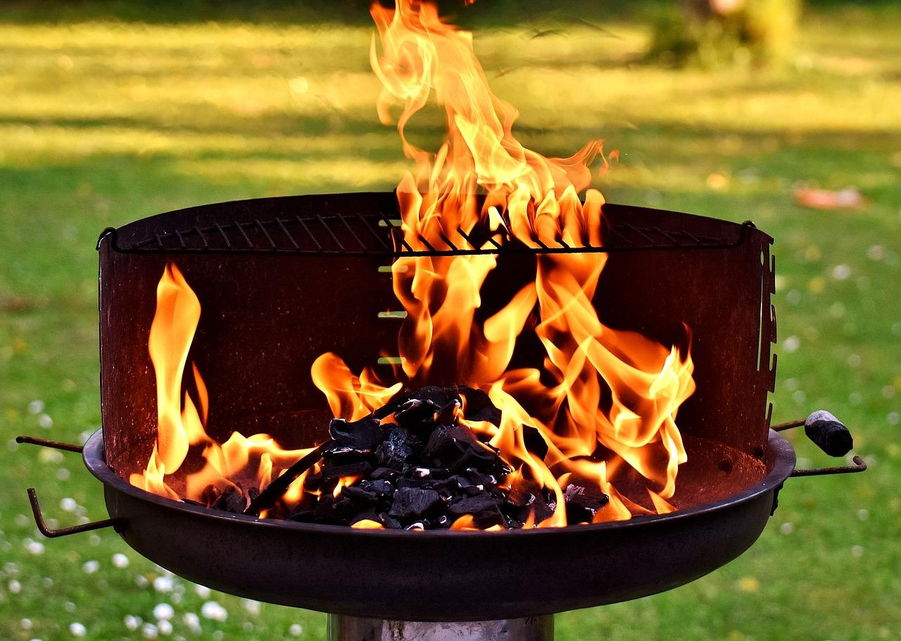 بهترین چوب برای زغال کبابی