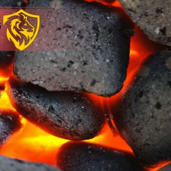 انواع زغال های موجود در بازار